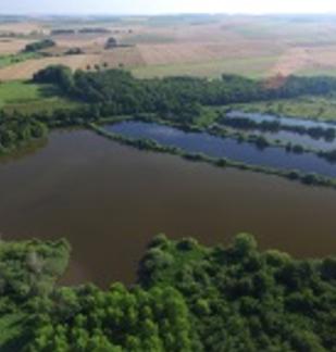 """Les """"dragons volants"""" du site Natura 2000  du Marais de Germont"""