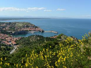 Les hauts de Collioure