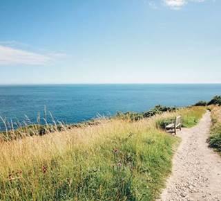 Sortie nature - Balade pédestre commentée, Golfe du Morbihan