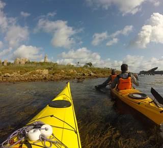 Balade nautique kayak, histoires et découvertes de l'entrée du Golfe