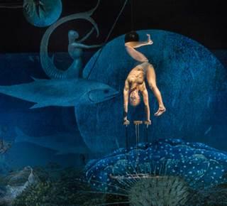 Bosch Dreams - Cie Les 7 Doigts de la Main