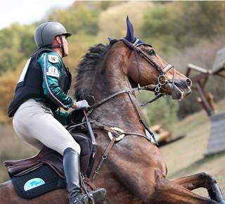 Championnat de France de Cross Country - Concours complet d'équitation