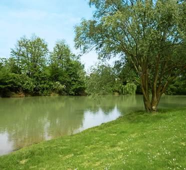 vue sur rivière