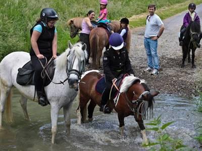 Centre équestre et poney club de Marlemont