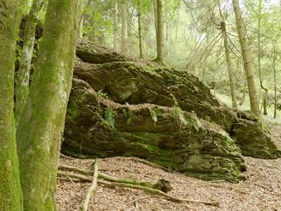 Bois du Dos du Loup : Le goulet de la Fange aux loups