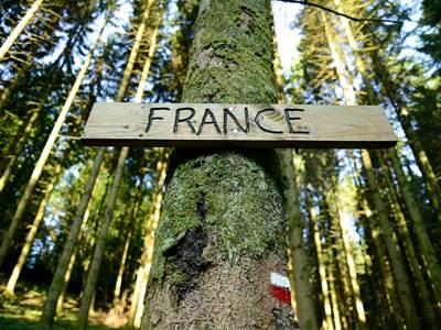 Foret Domaniale de Sedan, de France en Belgique... Au delà des frontières