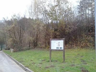 Sortie nature: La Réserve Naturelle Régionale de Bois en Val, un réservoir de Biodiversité en ville