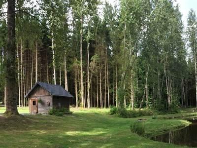 L'Echo de la Forêt