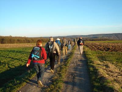 Excursion groupe - Randonnée et nature en Ardenne