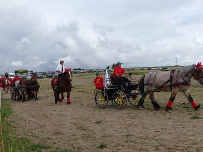 Festival d'été du Pays rethélois - 9e Fête du cheval de trait ardennais