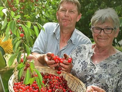 Les Vergers d'Hurtebise - Fruits de saison et légumes d'été