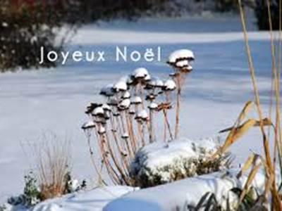"Atelier ""Noël Nature"""