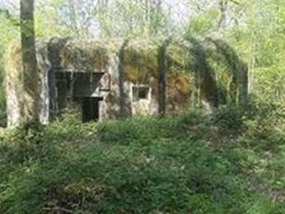Circuit Maginot et ses Blockhaus