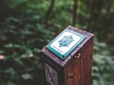 Sortie nature : Jeu de piste à la réserve de Bois-en-Val Une forêt dans la ville ?!
