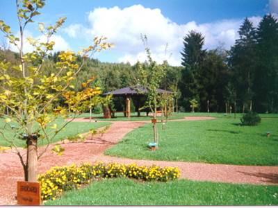 Arboretum de Matton et Clémency