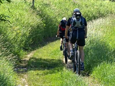 """Hiking """"Le Risdoux"""" n°20"""