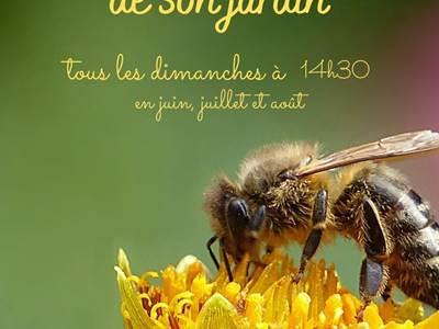 Visites du rucher en juillet