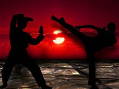 Nuit des Arts marciaux