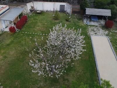 Drone avril 2020