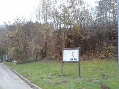 Sortie nature: Jeu de piste à la réserve du Bois en Val