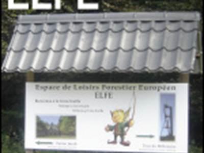 """Wandeltocht Elfe """"De bossen van Houssière"""""""