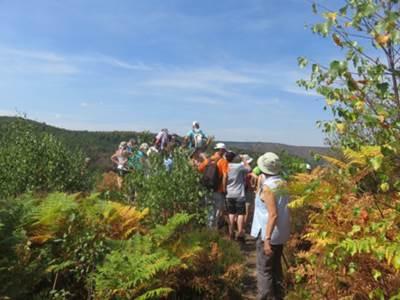 Découverte de la géologie, de la faune et de la flore des 4 Fils Aymon organisée par Association minéralogique et palonthologique de Bogny sur Meuse