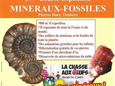 Bourse aux Minéraux Fossilles à Bogny sur Meuse