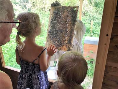 Ferme pédagogique apicole