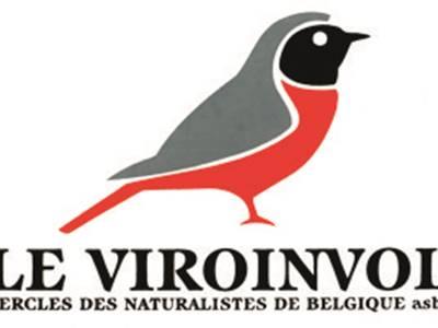 Observation des oiseaux printaniers