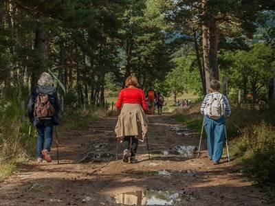 Sentier de la Falière