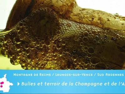 Bulles et Terroir de la Champagne et de l'Ardenne