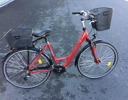 Giant Bikes