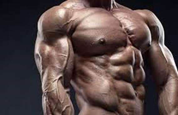 Compétition de body building