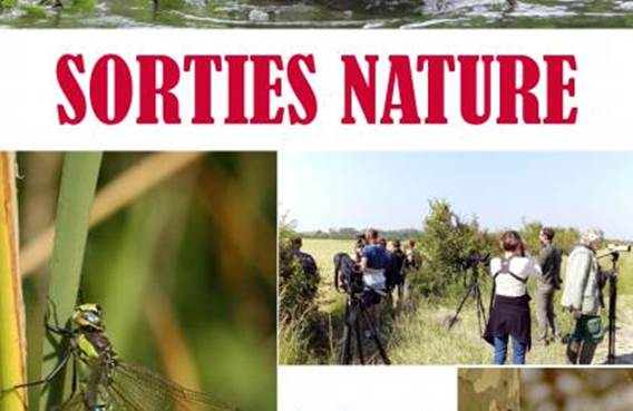 Sortie Nature: Restauration de la Trame Verte et Bleue