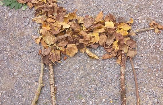 Land'art d'automne