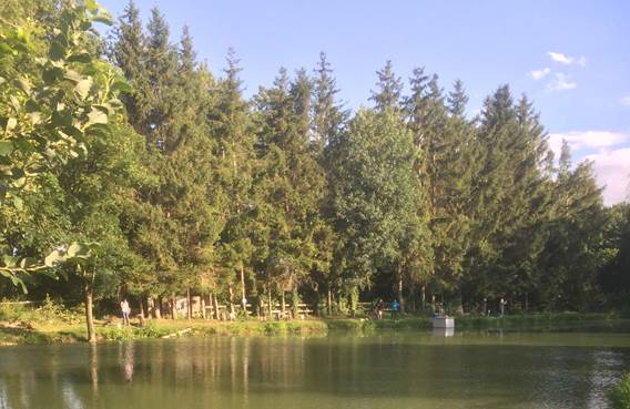 étang de pêche de la truite au bleu