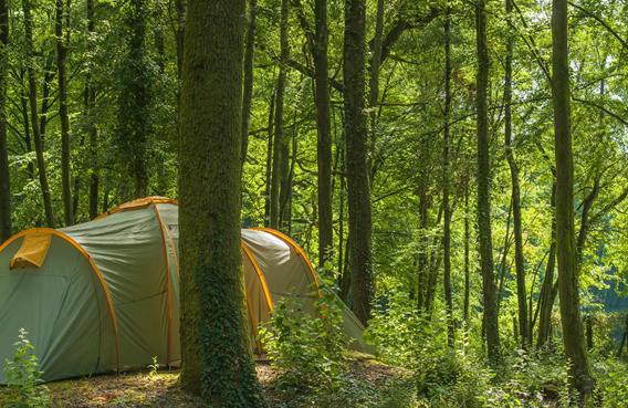 tente au camping