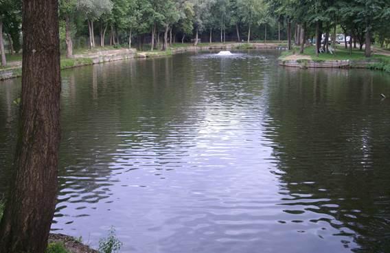 Pêche aux étangs de Villers-Semeuse
