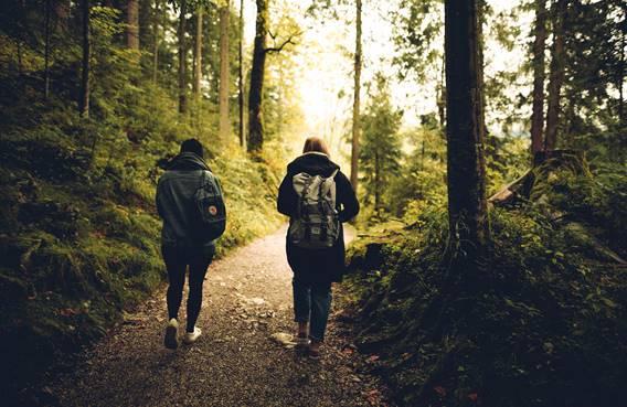Chemins de randonnées autours d'Elan
