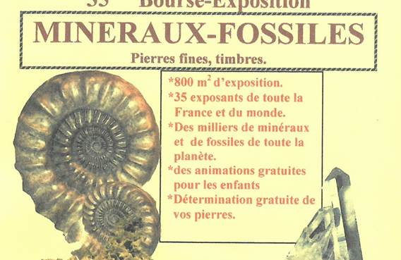 35 ème Bourse-Exposition aux minéraux-Fossiles de Bogny-sur-Meuse