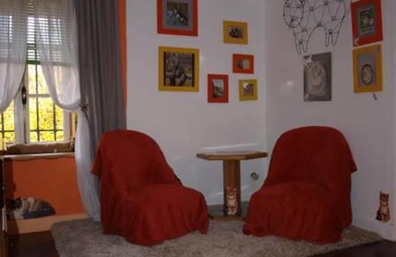 Chambre Rêves de Chats