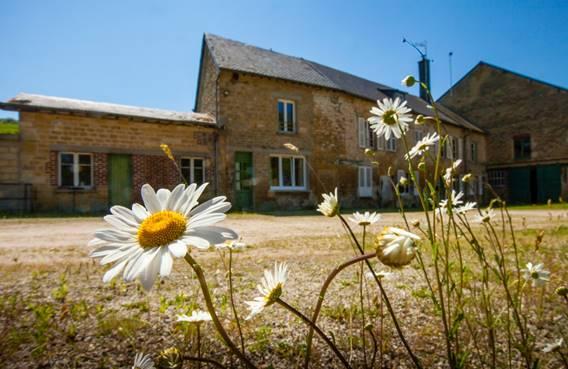 Moulin ancien de charme restauré - Yoncq - Ardennes