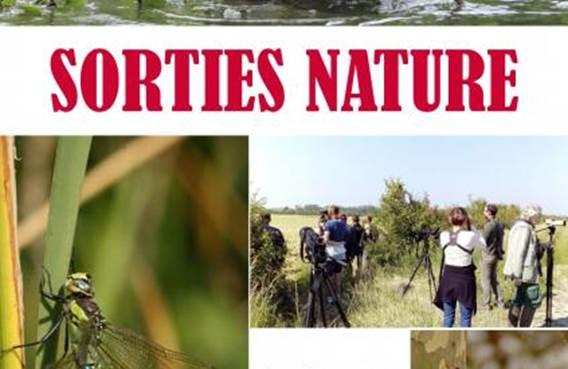 Sortie Nature: Le canal de Vouziers, une réserve pour la biodiversité ardennaise