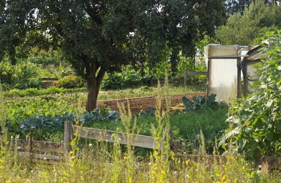 Les Jardins Ouvriers de Sedan (depuis 1892)