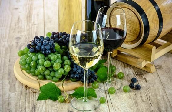 Salon Vins et Terroir