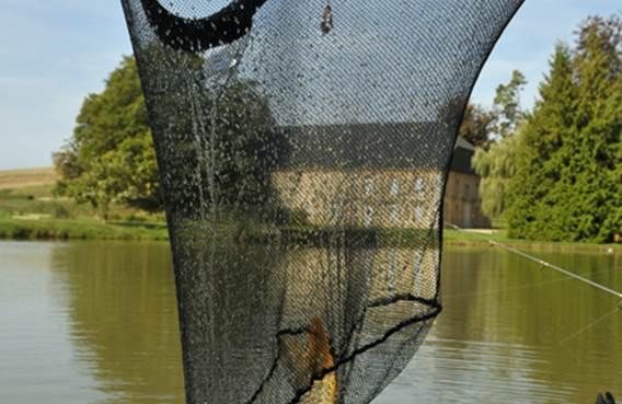La pisciculture de Vendresse