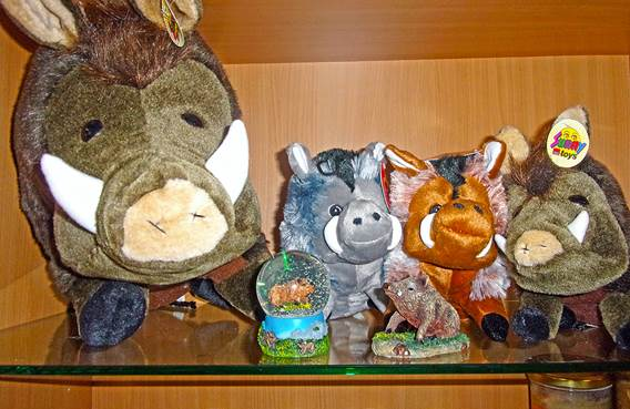 Peluches sanglier