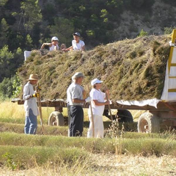 De ferme en ferme 2020 - Distillerie Bel Air