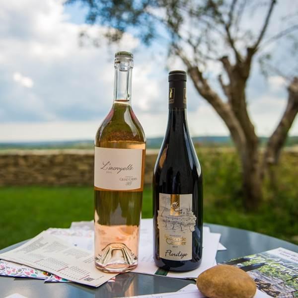Dégustez des vins IGP Cévennes!