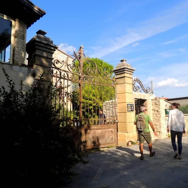 """Visite de l'oliveraie """"Soleil des Capitelles"""""""